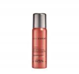 L`Oréal Professionnel Serie Expert Inforcer Bush Proof Spray 60 ml